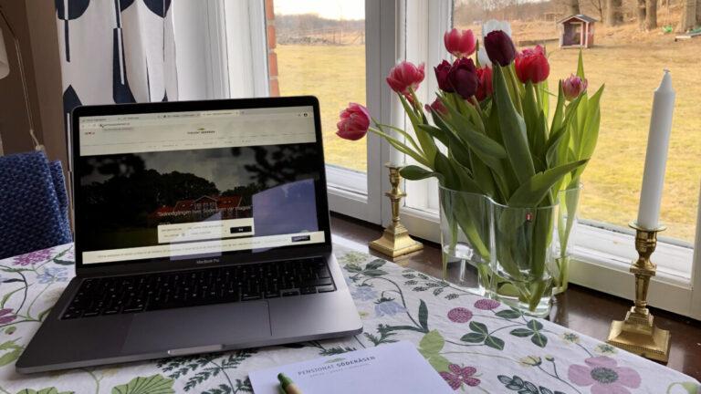 Workation på Söderåsen – våren 2021