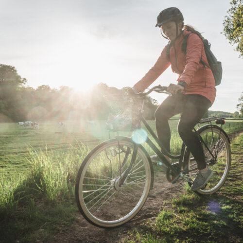 Cykla i sagolik natur